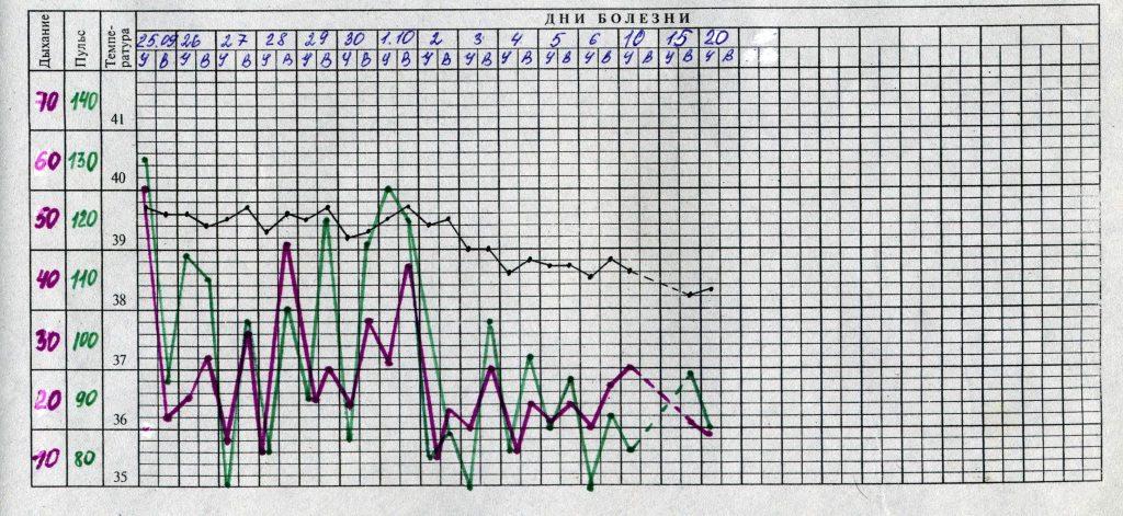 Заполненный образец температурного листа