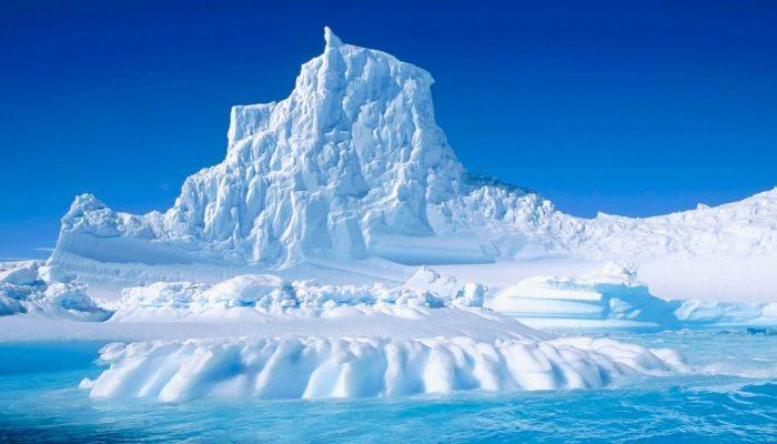 Экологические проблемы арктических пустынь